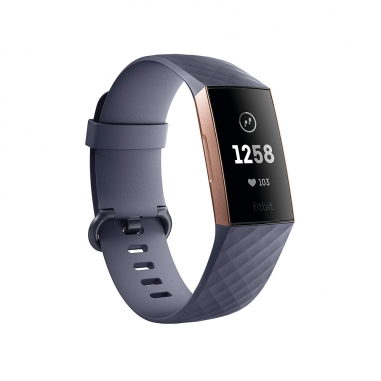 FitbitFitbit Fitbit Charge3玫框藍-灰色錶帶