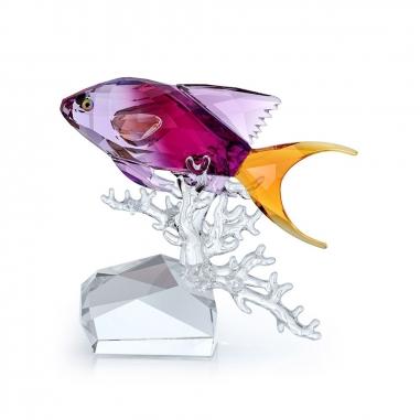 Swarovski施華洛世奇 CrystalOcean花鮨魚