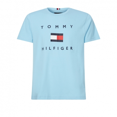 TOMMY HILFIGER湯米席爾菲格(精品) 男性T恤